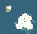ちょっと大きめ お花とアザラシのミニタオル