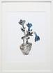 """NAZE """"Flowers #2"""""""