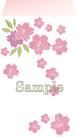 ポチ袋《桜》