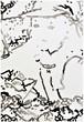 大橋麻里子 / Mariko Ohashi《drawing-44》