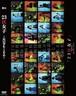 【公演DVD】舞台「23区女子-Survive-」2枚組み(Sチーム・Vチーム)収録