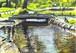 新緑のせせらぎ 練馬区石神井台