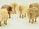 羊のコースター