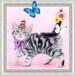 【印刷物】ステッカー(シール):ヘビのせ猫(世界最小のヘビ&アメリカン・ショートヘア)