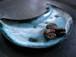 001 cyanotype plate  halfmoon
