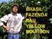 ブラジル Bau農園 イエローブルボン 200g