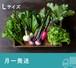 《月一発送》FIO野菜-定期便 Lサイズ