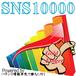 SNS10000