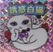 【Catelier Fumi】A誘惑白猫