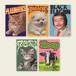 Ken Hamaguchi/5 Sticker set A