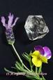 特価20%OFF 最高のチャクラの石☆ハーキーマーダイヤモンド No.8
