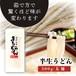 【税込み】半生うどん(麺)※賞味期限は届いた日から約1か月※