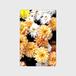 カードケース★オレンジの花