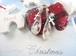 ホワイトクリスマスの風景を閉じ込めたしずくのピアス