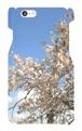 【スマホケース6/6s】春のアーモンド