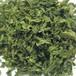 スペアミント(新鮮・低温高速乾燥)100g