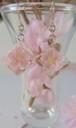 桜キューブのピアス・フックタイプ