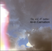 the end of summer / re-in.Carnation