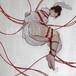 緊縛 緋色の縄