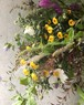 季節の香りと花束 如月    小サイズ                (北海道、九州、沖縄除く)
