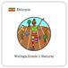 エチオピア ウォレガ ナチュラル / 100g