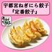 【100個】 宇都宮ねぎにら餃子 定番餃子 冷凍