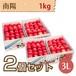 【さくらんぼ】南陽 1kg【3L】×2個セット