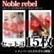 【チェキ・セット15枚】Noble rebel