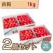【さくらんぼ】南陽 1kg【2L】×2個セット