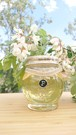Organic Honey Acacia 220g 国産非加熱はちみつ