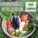 【定期便:毎週・火曜便】伊勢の国の野菜定期便セット(8~14品目)