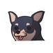 ミニチュアピンシャー(小) 犬ステッカー