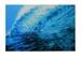 Aloha Hawaii ポストカード 絵画:グーフィースネイル(Goofy Snail)