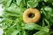 【期間限定!】冬に美味しい菜っ葉づくし!ドーナツ10個セット(自家用簡易包装)