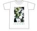 CENTURY Tシャツ