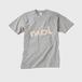 モルT(前バージョン、ねずみ色にモル色)