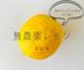 生口島のレモン1kg:大自然で生きる放置栽培の無農薬レモン