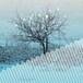 Chihei Hatakeyama /  Winter Storm