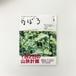 季刊のぼろ Vol.17(2017・夏)