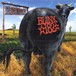 【USED】BLINK-182 / Dude Ranch