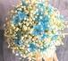 G0508) かすみ草とブルースターのラウンドブーケ (生花)