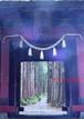 聖域の風景(縁起の良い奇跡の開運写真を戸隠神社で撮影)