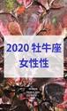 2020 牡牛座(4/19-5/19)【女性性エネルギー】