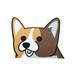 ウェルシュコーギー(大)  犬ステッカー