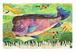 2009年「コブダイの親子」絵はがき