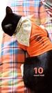 """10*スカとお揃いTシャツ♪(1)""""18ice"""""""