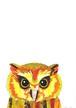 [コラージュ] animalor | フクロウ
