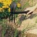 フィスカース ツール ガーデンホーレーキ 2004000142