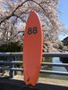 88SURFBOARDS  6'6'' Swallow Orange/White  本州送料¥8800込み価格