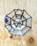 蜘蛛の巣トレイ